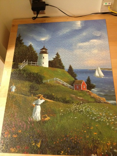 1000 jigsaw puzzle